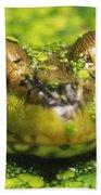 Green Frog Hiding In Duckweed Bath Towel