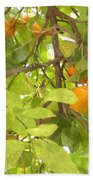 Green Leaves And Mature Oranges On The Tree Bath Towel