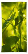 Greenery Bath Towel