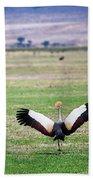 Grey Crowned Crane. The National Bird Of Uganda Bath Towel