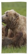 Grizzly Bear Playing With Cub Lake Bath Towel
