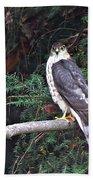 Hawk On Branch Bath Towel