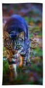 Here Kitty Kitty Bath Towel
