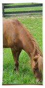 Horse Bath Towel