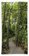 Jungle Trail Bath Towel
