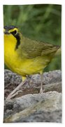 Kentucky Warbler Bath Towel