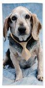 Kippy Beagle Senior Bath Towel