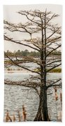 Lake Mattamuskeet Nature Trees And Lants In Spring Time  Bath Towel