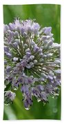 Lavender Globe Lily Bath Towel
