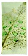 Leaf With Green Drops Bath Towel