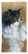 Longhaired Hand Towel