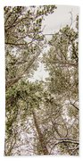Looking Up At Snow Covered Tree Tops Bath Towel