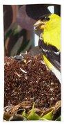 Male American Goldfinch Bath Towel