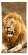 Male Lion Bath Towel
