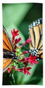 Monarch Danaus Plexippus Bath Towel