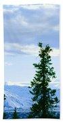Mount Mckinley, Alaska Bath Towel