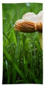 Mushroom Growing Wild On Lawn Bath Towel