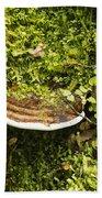Mushroom Plate Bath Towel
