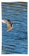 Northern Pintail Drake Taking Bath Towel