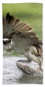 Osprey With A Living Fish, Fischadler Bath Towel
