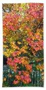 Pallette Of Fall Colors Bath Towel