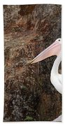 Portrait Of An Australian Pelican Bath Towel