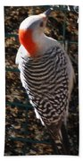 Red Bellied Woodpecker Bath Towel