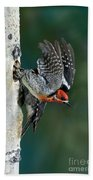 Red-breasted Sapsucker Bath Towel