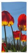 Red Tulips With Blue Sky Background Bath Towel