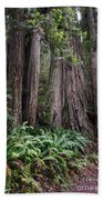 Redwood Bath Towel