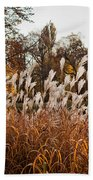 Reeds Highlighted By The Sun Hand Towel