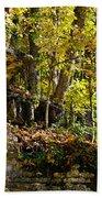 Rock Shelf And Forest Bath Towel