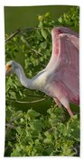Roseate Spoonbill Bath Towel