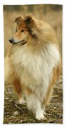 Rough Collie Dog Bath Towel
