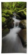 Ruckel Creek  Oregon, United States Bath Towel