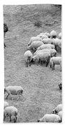 Shepherd With Sheep  Bath Towel
