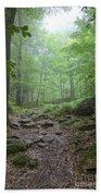 Silence Of The Forest Bath Towel