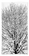 Snow Cover Hand Towel