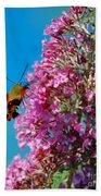 Snowberry Clearwing Hummingbird Moth Bath Towel