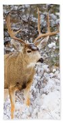 Snowstorm Deer Bath Towel