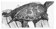 Southern Painted Turtle Bath Towel