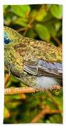 Sparkling Violet Ear Hummingbird Bath Towel