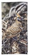 Spinifex Pigeon Bath Towel
