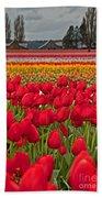 Springtime Tulip Field Art Prints Bath Towel