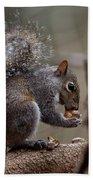 Squirrel II Bath Towel