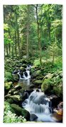 Stream Flowing Through A Forest, Usa Hand Towel