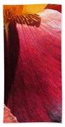 Tall Bearded Iris Named Ancient Echoes Bath Towel