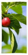 Tart Cherries Bath Towel
