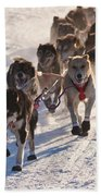 Team Of Sleigh Dogs Pulling Bath Towel