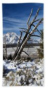 Tetons In The Distance Bath Towel